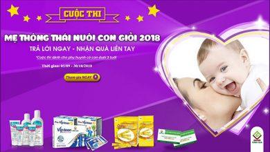 me-thong-thai-nuoi-con-gioi-2018